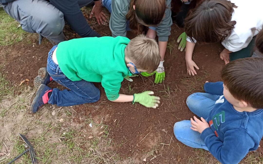 La Escuela Rural Activa de Vall de Almonacid organiza la Feria de Intercambio de Semillas