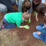 La Escuela Rural Activa de Vall de Almonacid organiza la Feria de Intercambio de Semillas 1