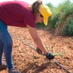Ser mujer y agricultora es más difícil: Denuncian que las explotaciones de titularidad femenina tienen más difícil acceder a ayudas 1