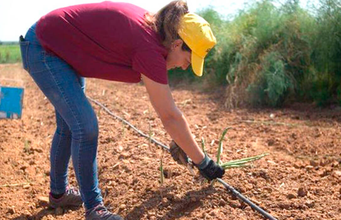 Ser mujer y agricultora es más difícil: Denuncian que las explotaciones de titularidad femenina tienen más difícil acceder a ayudas