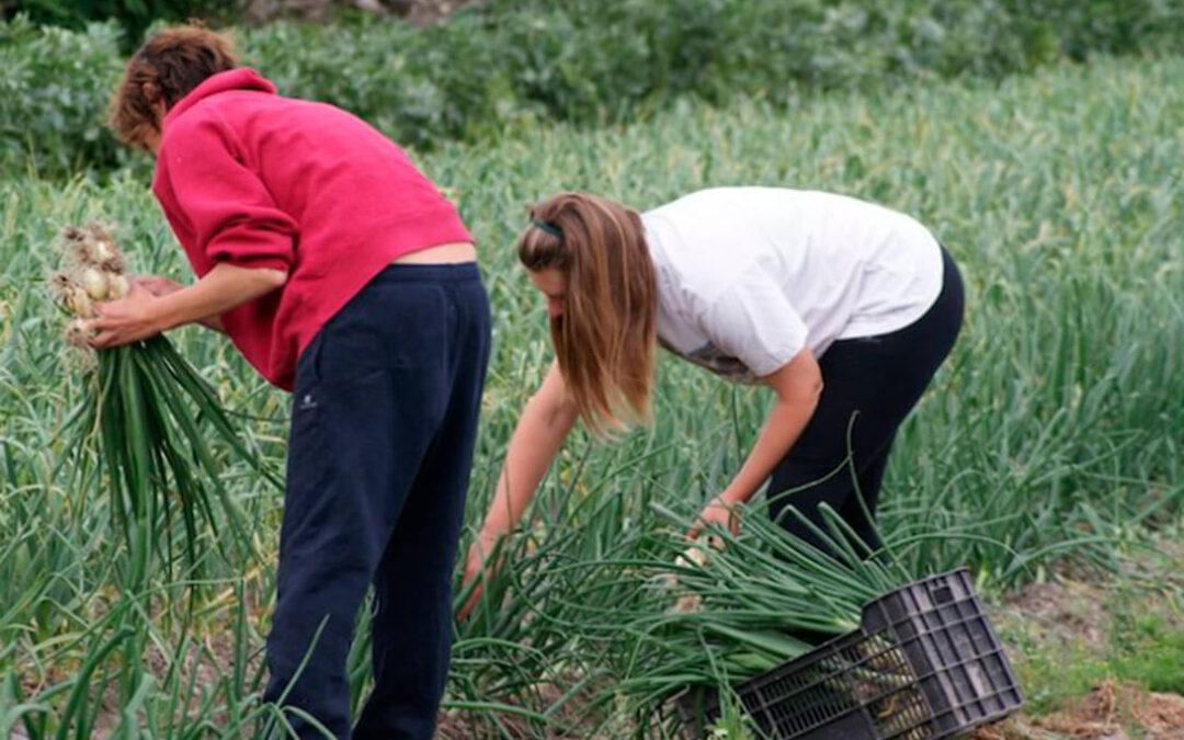 Fademur «siembra conciencias para recoger igualdad» en el medio rural formando a los concejales de Igualdad