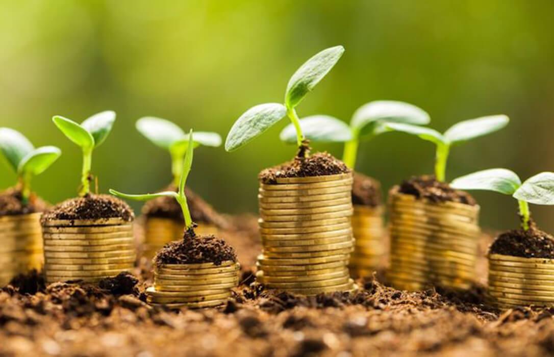 Planas anuncia que habrá «financiación e instrumentos» para afrontar la transición verde que quiere impulsar Europa