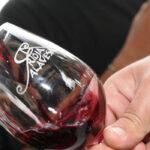 A Planas no le gusta la idea de crear una DOP Vinos de Álava y defiende la «unicidad» de la Denominación de Origen Rioja 1