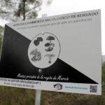 Nace la Asociación de Recolectores Profesionales de Setas Silvestres para avanzar en la ordenación y regulación de este recurso 1