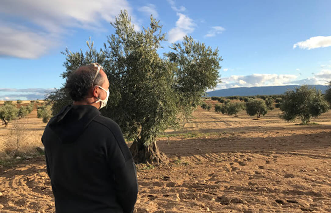 """Debate de la PAC: Castilla-La Mancha reclama """"una auténtica revolución en el pago redistributivo y hacerlo de manera decidida"""""""