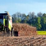Pagos PAC: Agricultores y ganaderos españoles ya han recibido 4.402 millones del Feaga hasta el 28 de febrero 1
