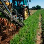 El Ministerio rebaja más de un 10% el presupuesto máximo para el régimen simplificado de pequeños agricultores para la campaña de 2020 1