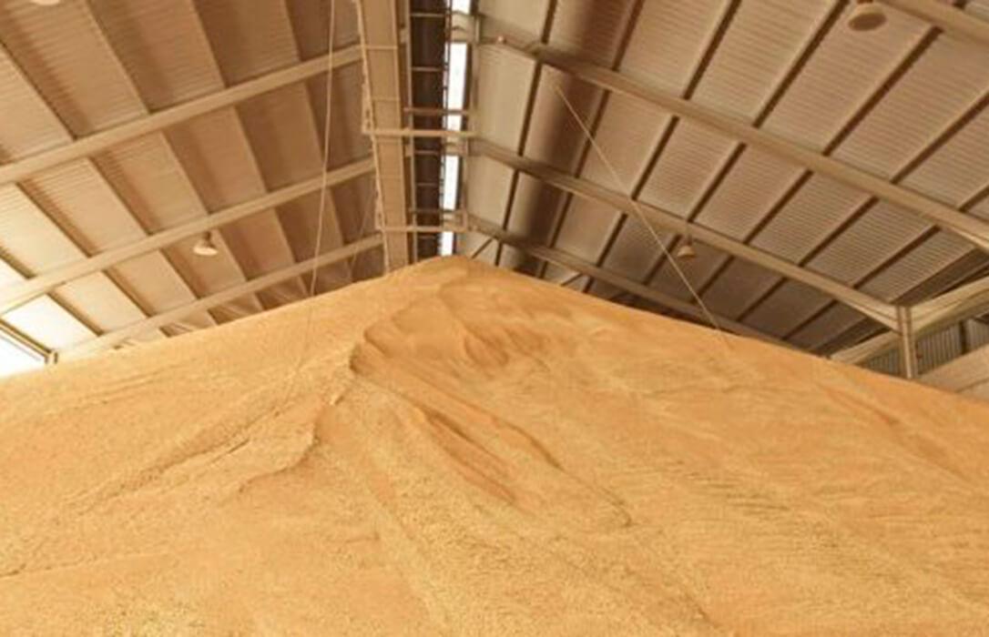 Los precios de los cereales se encarecen de nuevo de forma generalizada salvo el de la cebada de malta que pierde cinco euros