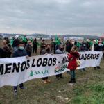 Las opas se manifiestan en Aguilar de Campoo a favor del ganadero y en contra de la protección del lobo 1
