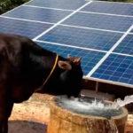 El Gobierno da 30 millones en ayudas al ahorro de energía en explotaciones y regadío cuando se logre una reducción del consumo del 10% 1