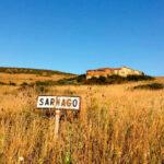 Negras previsiones: Alerta ante el riesgo de abandono de 2,3 millones de hectáreas agrarias para 2030 en la España vaciada 1