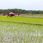 El sector agroalimentario se une para reclamar a la Administración un impulso a la agrociencia y la toma de decisiones basada en la ciencia 1