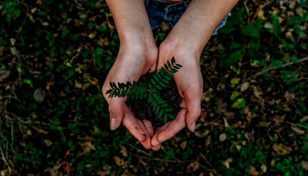 Cuidar nuestra tierra es cuidar nuestro futuro