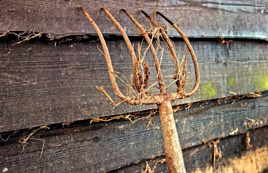 Críticas al Gobierno: La subida del paro en la agricultura es «la demostración del maltrato del Gobierno a las políticas agrarias»