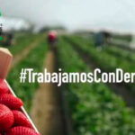 Lanzan una iniciativa en apoyo para dignificar el trabajo de los agricultores/as de la campaña de frutos rojos 1