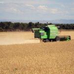 Los precios de los cereales empiezan una etapa de contención con caídas de avena y trigo y moderación en el resto 1
