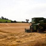 Frenazo en seco a las cotizaciones de los cereales con bajadas generalizadas y final del momento dulce que ha vivido el sector 1