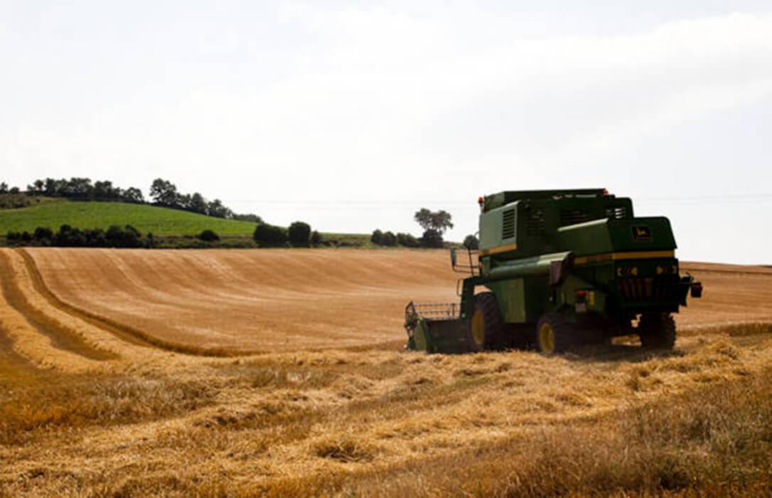 Frenazo en seco a las cotizaciones de los cereales con bajadas generalizadas y final del momento dulce que ha vivido el sector