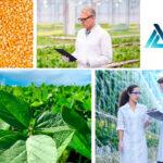 ICL compra el negocio sudamericano de nutrición vegetal de Compass Minerals y le convierte en líder de especialidad en Brasil 1