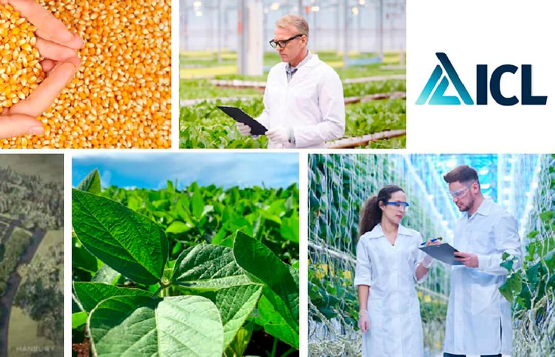 ICL compra el negocio sudamericano de nutrición vegetal de Compass Minerals y le convierte en líder de especialidad en Brasil