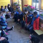 'La Barja' lleva la granja al colegio para que alumnos y alumnas de 3, 4 y 5 años aprendan la producción de huevos ecológicos 1