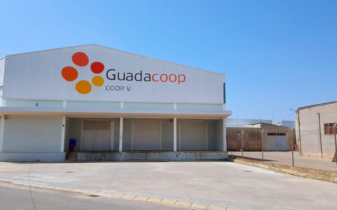 La cooperativa Guadacoop impulsa el papel de la mujer en la toma de decisiones al configurar su primer consejo paritario