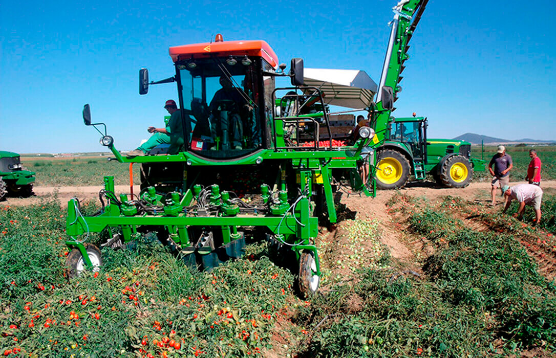 Agricultores y ganaderos siguen sin hacer la declaración de la renta por el retraso en la publicación de la orden de reducción de módulos