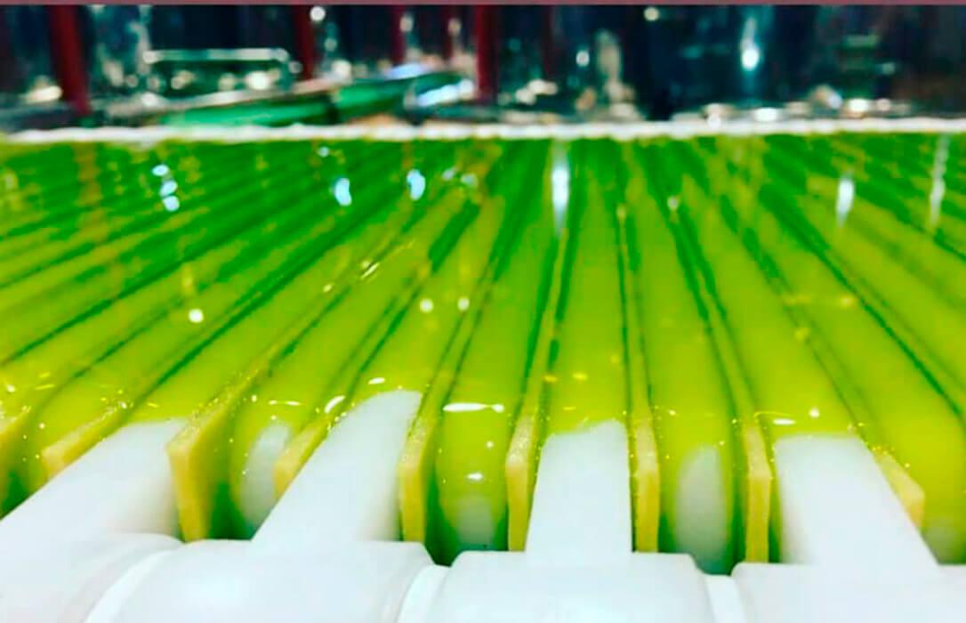 Fin de campaña: Destaca la buena salud de la comercialización de aceite de oliva y la subida de los precios en origen