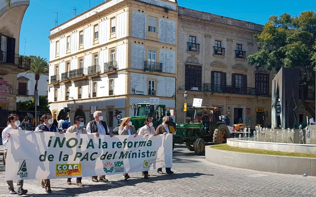 La guerra contra la PAC en Andalucía pasa de las calles a los ayuntamientos, con una petición de moción conjunta de rechazo en Cádiz