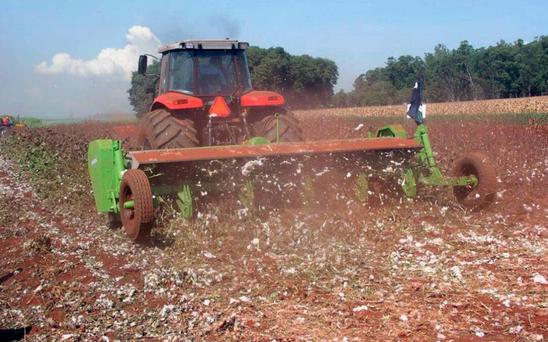 Nuevo elemento al debate de la PAC: Planas abre la puerta a que el 20% de las ayudas vaya a pagos redistributivos a los pequeños agricultores