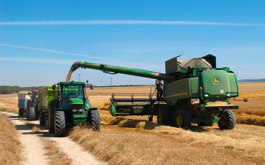 Avena, maíz y cebada toman aire y vuelven a las subidas mientras que el trigo duro y blando se estancan en los mercados mayoristas