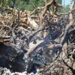 Satisfacción porque se haya acordado prorrogar las quemas en terrenos forestales para abril 1