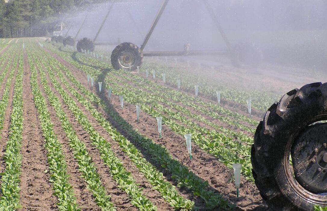 Avisan sobre el golpe para el regadío de Castilla y León con las nuevas tarifas eléctricas que subirán la factura entre el 40 y el 50%