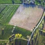 La CE presenta su nuevo Plan de Acción Europeo para la Producción Ecológica con la vista puesta en lograr el objetivo del 25% de superficie 1