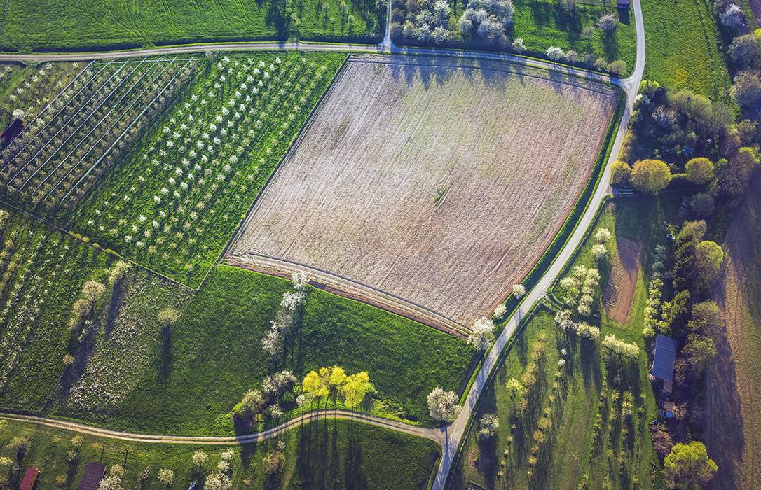 La CE presenta su nuevo Plan de Acción Europeo para la Producción Ecológica con la vista puesta en lograr el objetivo del 25% de superficie