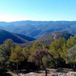 Los selvicultores españoles aplauden la Ley del Cambio Climático y piden estar en el futuro Comité de Expertos 1