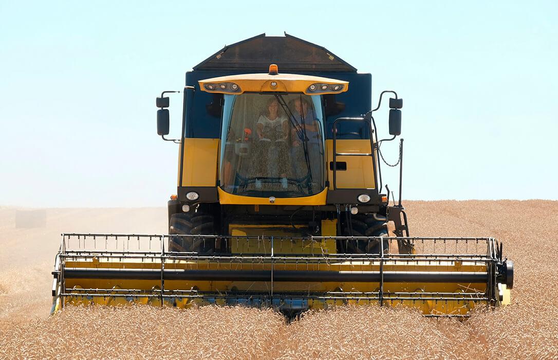Se reduce un 3,5% la superficie sembrada de cereal de otoño-invierno para esta campaña con caídas en todas las variedades