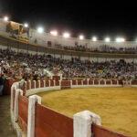 El sector del toro de lidia quiere volver a las plazas en abril y mayo y reclama medidas sanitarias que les permita retomar su actividad 1