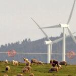 Los agricultores y ganaderos recelan del auge de las energías renovables por el uso de la tierra y porque marginar al propio sector