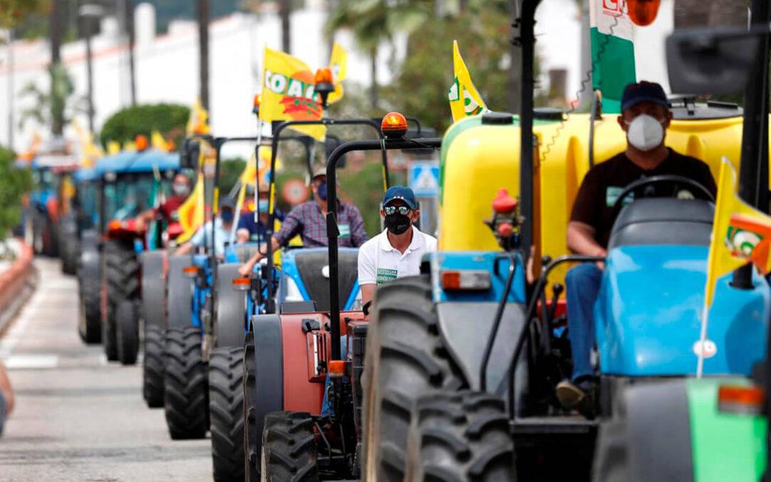 Tractorada contra la instalación masiva de fotovoltaicas en Castellar (Cádiz) por su perjuicio a la agricultura