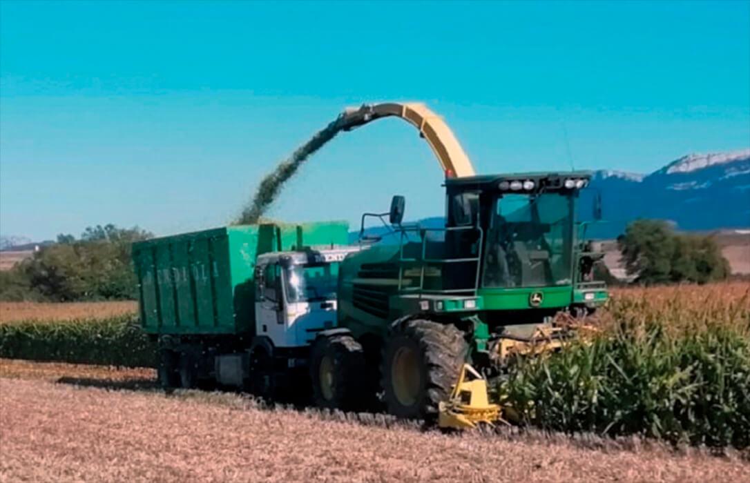 El maíz sigue siendo el motor de la subida de los cereales, que están a la espera de nuevos datos del sector a nivel mundial
