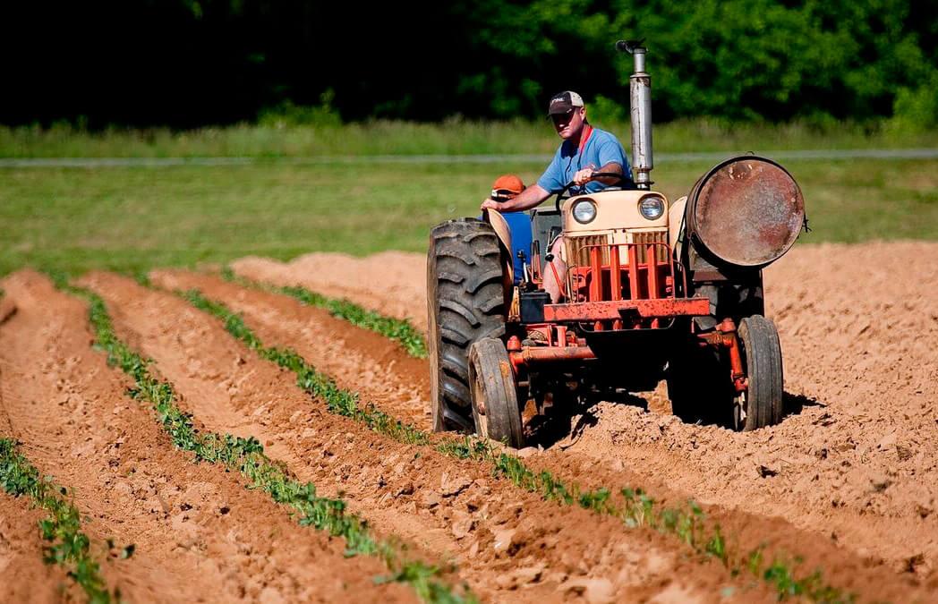 La PAC se encalla en Bruselas y ya se habla de más tiempo: España se opone a la propuesta de agricultor genuino y el pago a ecoesquemas
