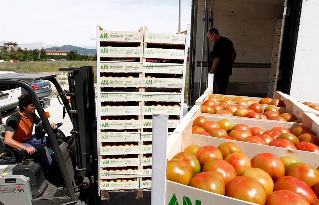 El nuevo peaje en las carreteras impactaría negativamente sobre la competitividad de la exportación de frutas y hortalizas