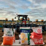 Advierten del descenso sostenido del cultivo de girasol en Castilla-La Mancha por la falta de rentabilidad