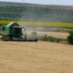 Nueva escalada en el precio de los cereales, que ya da vértigo al no ser posible cuánto hay de realidad y cuánto de especulación