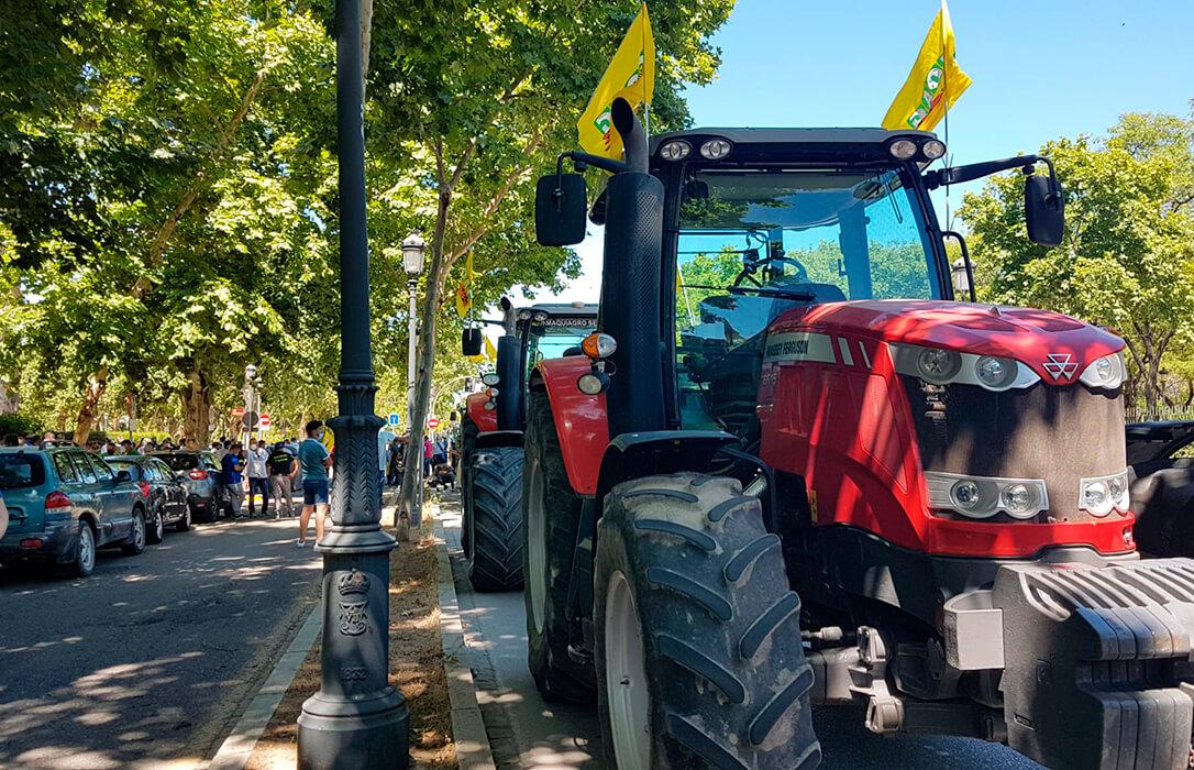 Los agricultores de Sevilla reivindican con una tractorada un reparto justo del agua y logran que la CHG se plantee otro reparto