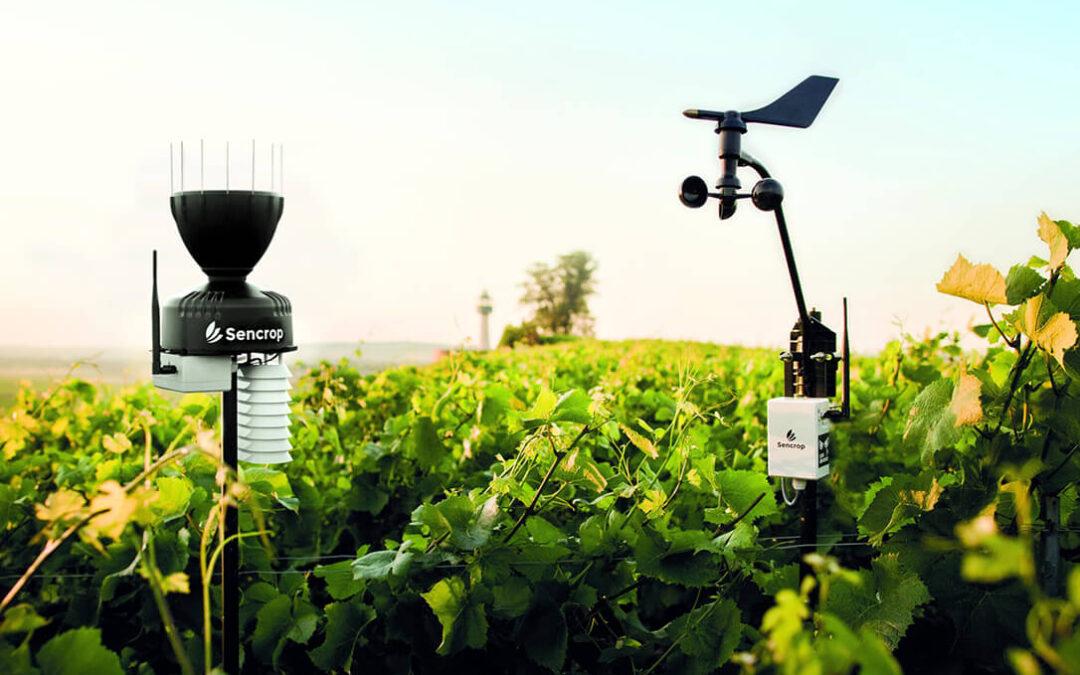 Innovación en la agricultura: Sencrop reúne ahora los principales modelos meteorológicos en una sola aplicación