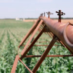 Mucho más que un problema de agua: El cierre del trasvase Tajo-Segura ocasionaría la pérdida de 45.000 empleos