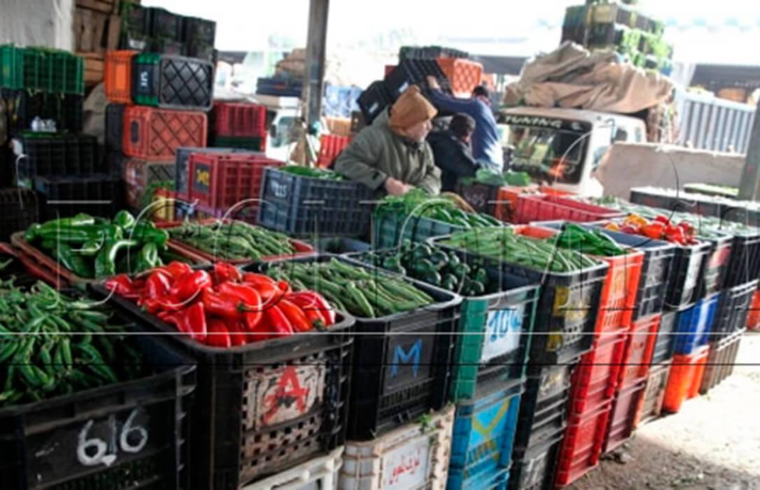 Marruecos se defiende y asegura que las frutas y hortalizas marroquíes en la UE representan solo el 2% del mercado