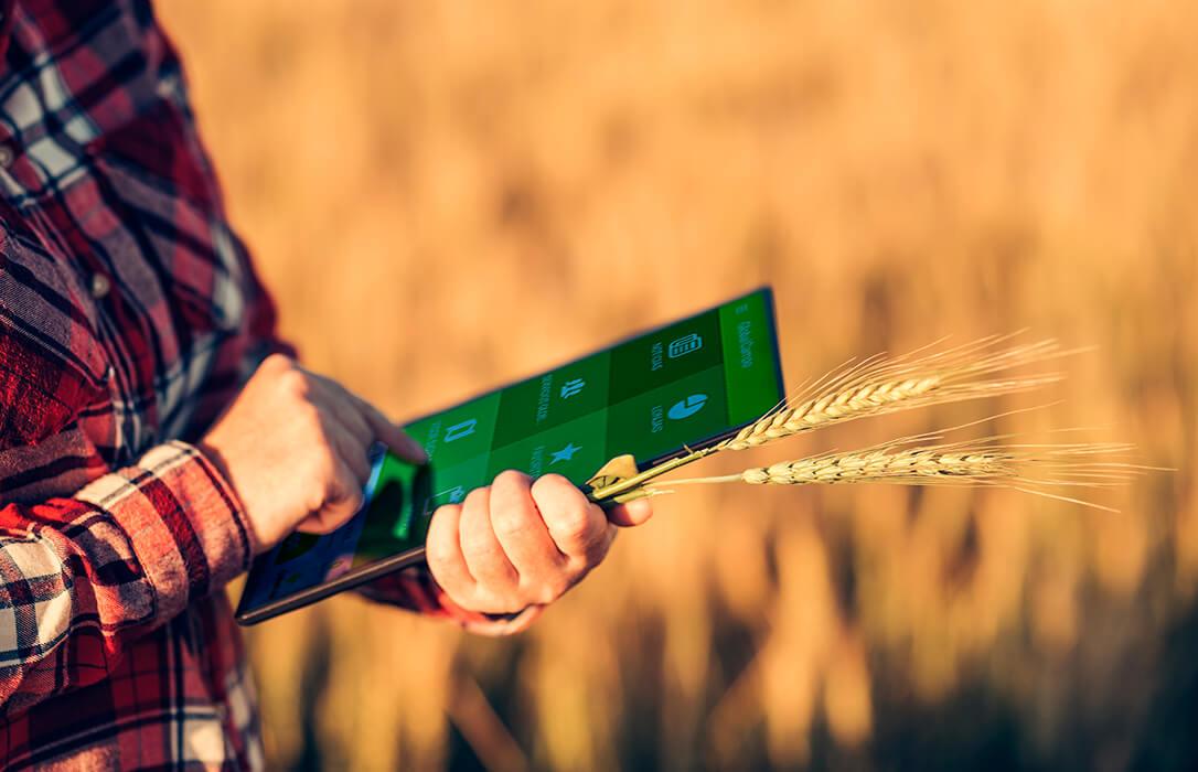 Publicado en el BOE el convenio con Saeca para facilitar la financiación del sector agrario tras la pandemia